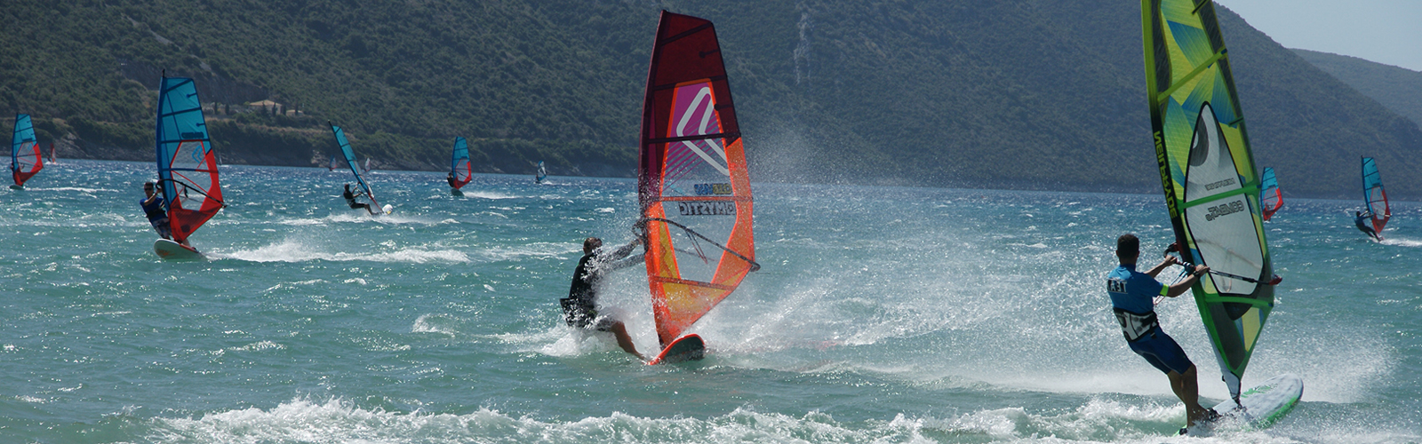 Windsurfing with Flying Fish