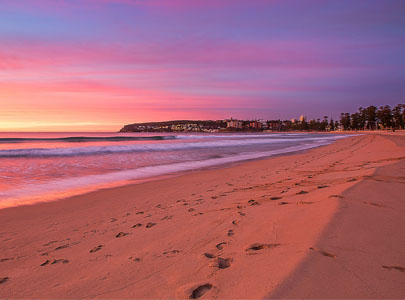 Manly Beach Flying Fish Online